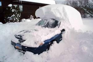 blizzard-02-l